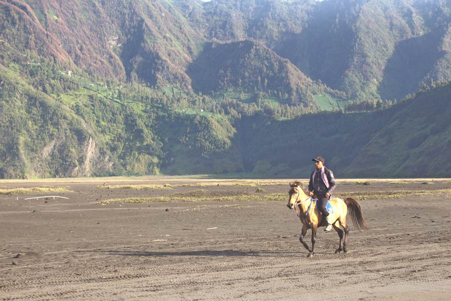 Horse Riders On Mount Bromo Anda Dieng Plateau